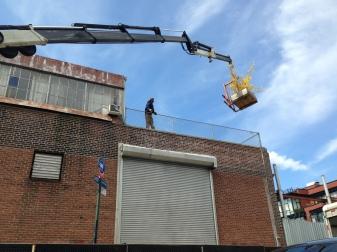 Nin Brudermann's loft is demolished in the early morning, the flowering bush is rescued