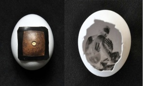 egg-pinhole-camera-by-Francesco-Capponi