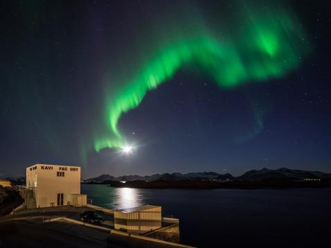 KaviarFactory - Lofoten Norway