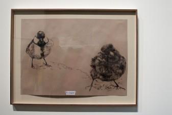 Olga Chernysheva , 56th International Art Exhibition - All the World's Futures, Arsenale