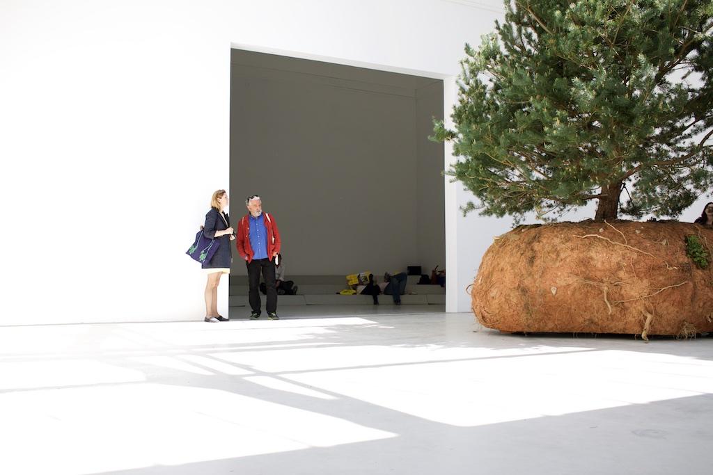 Céleste Boursier-Mougenot, French Pavilion at the 56th Venice Biennale