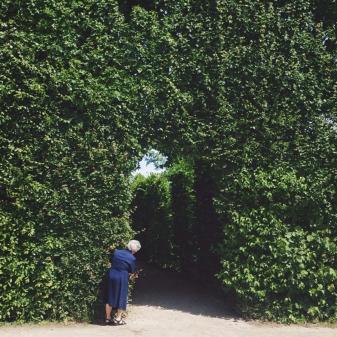 Schönbrunn Photo: https://instagram.com/anasbarros/