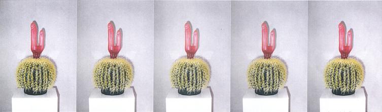 Renate Bertlmann, Kaktus-Installation, 1999, Objekt Installation Foto, approx. 200 x 60 x 80 cm, © Renate Bertlmann