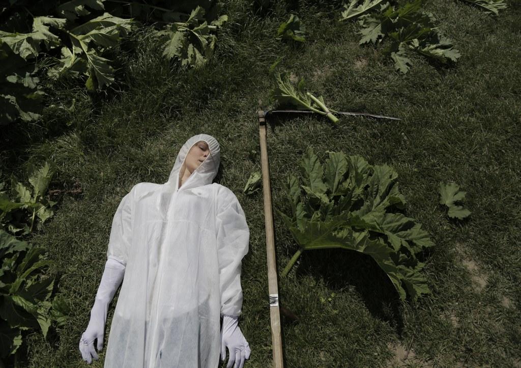 Alina Sokolova, Heracleum Sosnowskyi – Leninopad, Performance documentation, Print 60x90 cm, 2016, © Alina Sokolova