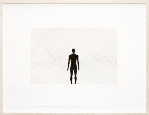 Antony Gormley, Horizon Field