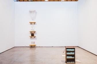 Suchan Kinoshita (JP), Galerie Nadja Vilenne (BE)